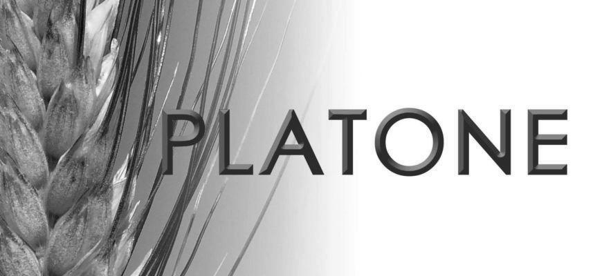 Frumento duro: la novità APSOV è Platone